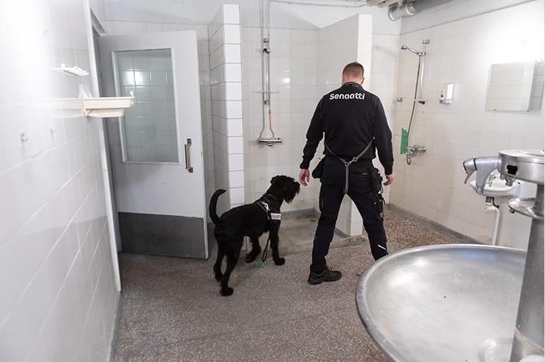 Ville Heikkinen ja Fiinu koira.
